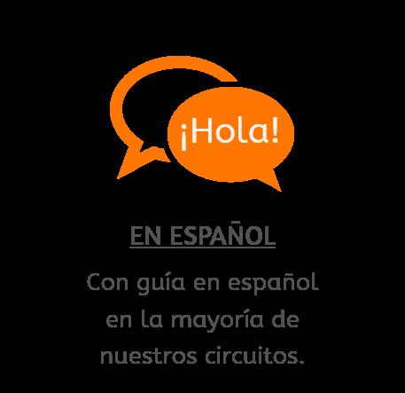 Viajes, en la mayoría de las ocasiones, con guías que hablan español.